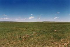 South Dakota Acreage