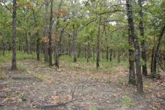 20-acres McIntosh County, OK