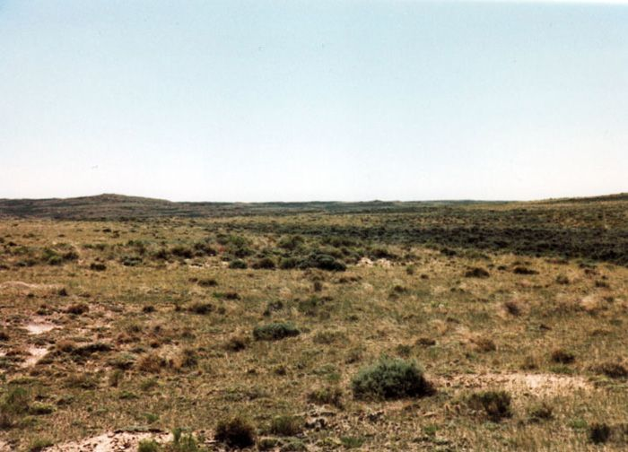 320-acres Rochelle Ranch $195/acre
