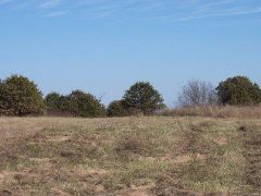 20-acres in eastern Oklahoma