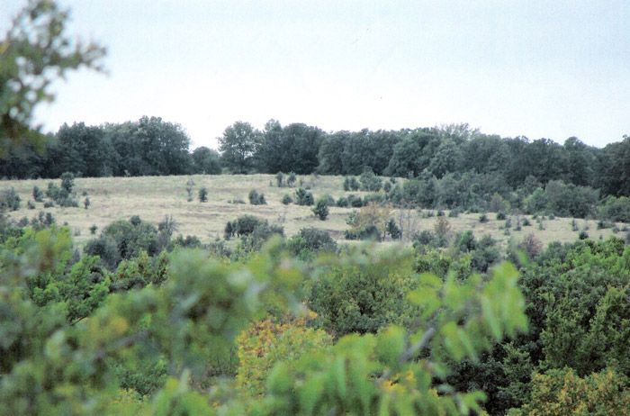 20-acre lots in Okfuskee County